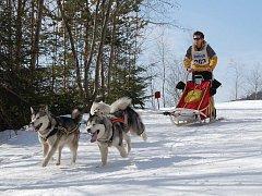 Rekordních pětasedmdesát musherů se přihlásilo na osmnácté závody psích spřežení, které tradičně hostí areál Eduard v Jáchymově.