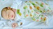 Adámek Jankov z Josefova se narodil 24. 8. 2014