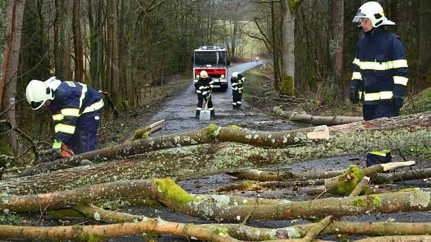 Hasiči odstraňovali popadané stromy například u Lázní Kynžvart.