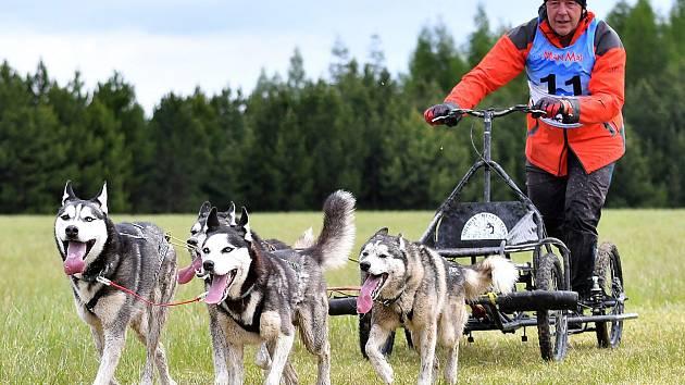Siberian Husky víkend 2019