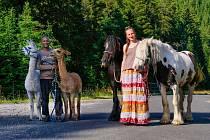 Alice Janstová a její lamy, které s sebou vodí i na procházky.