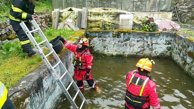 Kuriózní zásah za sebou mají hasiči z Horního Slavkova. Vyjížděli k záchraně kachňat, která uvízla ve vodní nádrži ve Kfelích.