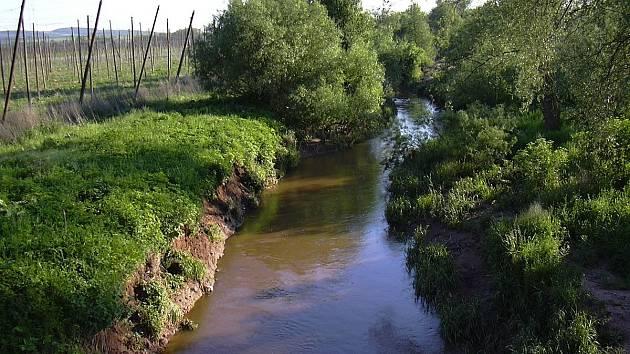 Blšanka (německy Goldbach) je řeka v Česku, pravostranný přítok Ohře.