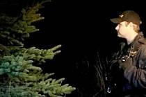 Policisté kontrolovali v lesích, zda někdo nekrade stromky.