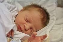 MARTÍNEK VALACH z Ostrova se narodil 1. 11. 2016
