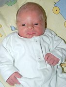Mireček Fišer z Ostrova se narodil 9. 11. 2011