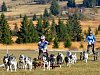 ABERTAMSKÝ SPRINT – MEMORIÁL JAROSLAVA SVOBODY. Po dva víkendové dny se v Abertamech a jejich okolí proháněla v rámci nominačního závodu na mistrovství Evropy stovka mašérů, která bojovala o účast na blížící se Evropě.