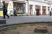 Pokácené stromy v Zeyerově ulici nahradí po opravě Národního domu nová zeleň
