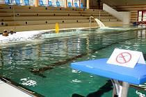 Plavecký bazén u KV Areny.