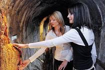 Na nově otevřené trase pod Vřídelní kolonádou budou k vidění například útvary připomínající stalagmity. Pro veřejnost je otevřeno od soboty 3. května, od 14 hodin.