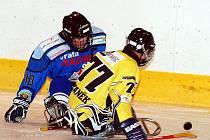 V úvodním utkání sledgehokejové ligy si připsali na své konto vítězství 6:1 hráči karlovarského SKV Sharks (v modrém), když pokořili na ostrovském zimním stadionu mužstvo Studénky (ve žlutém).