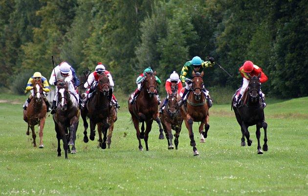 Lužnice (vpravo) si běží pro triumf v Ceně Masise.