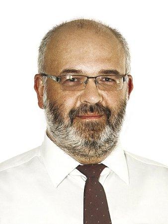 Roman Procházka, ANO 2011