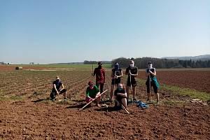 Běžci z Rozběháme Vary už nějaký ten den brigádničí na Farmě Stebno u Petrohradu. Foto: Rozběháme Vary