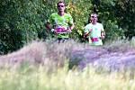 T-Mobile Olympijský běh v Karlových Varech
