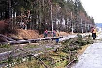 ORKÁN KYRILL na Chebsku zdevastoval nejen lesní porosty. Škody byly i na elektrickém vedení. Vyvrácené stromy strhly trolejové vedení mezi Mariánskými Lázněmi a Velkou Hleďsebí. Místo trolejbusů tak několik dnů jezdili lidé autobusy.