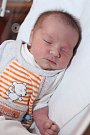 Adélka Chlapovičová z Ostrova se narodila 16. 11. 2012