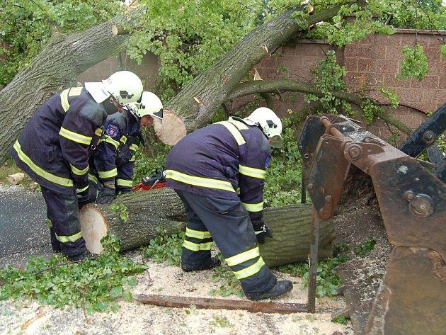 Spadlý strom zatarasil hlavní cestu v Sedleci.