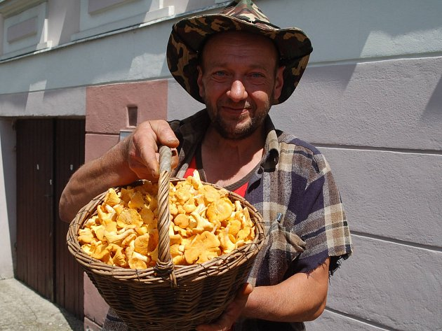 Chodíte na houby? Tak se nám pochlubte se svými lesními úlovky. Stejně jako Milan Černohorský z Bečova.