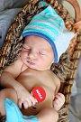 Honzík Polák z Hájů se narodil 25. 11. 2015