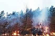 Požár suché trávy u Ostrova.