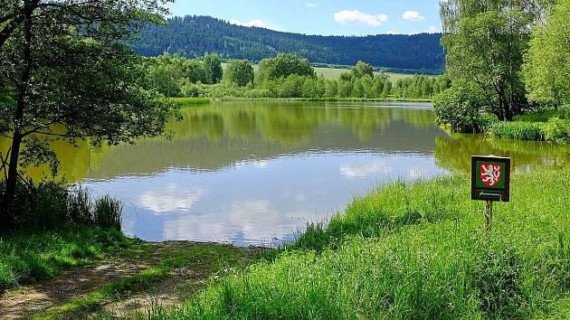 Blažejský rybník je přírodní památka u Branišova na Karlovarsku.