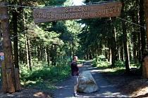 Na Plešivci se otevřela nová stezka, která je plná soch bájných postav Krušnohoří