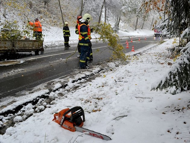 Těžký sníh vyvracel a lámal stromy. Hasiči rozřezali a odstranili množství stromů a větví, které blokovaly provoz na silnicích.