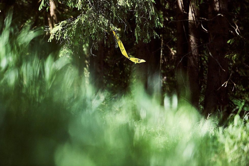 Kladská nastavila během závodu Běhej lesy tentokrát přivětivou, slunečnou tvář.