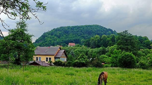 Liščí vrch u Velichova.