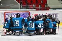 SKV Sharks Karlovy Vary. Ilustrační foto.