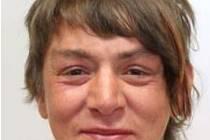 Pohřešovaná žena z Karlovarska.