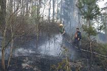 300 tisíc metrů čtverečných lesa a luk zasáhl požár, který vznikl od jisker sršících z poškozených brzd vagonu.