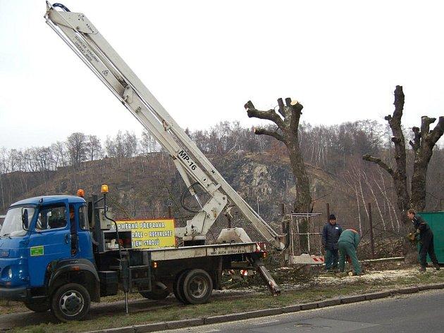 KÁCENÍ. Celkem deset stromů muselo být pokáceno kvůli výstavbě nákupního střediska Lidl na Čertově ostrově.