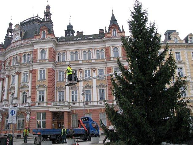 Vánoční strom zatím sympatie nezískal