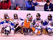 Sledge hokej, semifinále: SKV Sharks K. Vary - Lapp Zlín 0:4.
