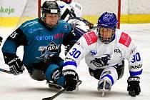 Úvodní dvoukolo parahokejové ligy mají před sebou hráči SKV Sharks Karlovy Vary, odehrají ho na zimním stadionu v Ostrově.
