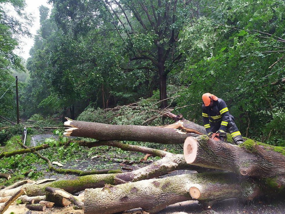 Následky bouřek v Karlovarském kraji. Hasiči řešili na 80 událostí, především na Ašsku . Čerpali vodu za zatopených prostorů a odstraňovali především stromy popadané na silnice.