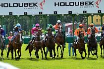 Tularka (třetí zleva) obhahuje loňský triumf v Letní ceně klisen.
