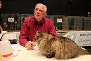 Mezinárodní výstava koček v Karlových Varech.