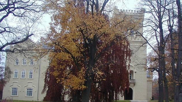 Ačkoli oficiálně končí sezona v zámku Lažanských v listopadu, pro objednané skupiny bude zámek k dispozici. Letos se chystají také adventní posezení u krbu a prohlídka interiérů.