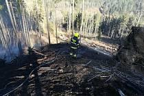 Hasiči museli při likvidaci velkého lesního požáru táhnout vodu až z velké dálky.