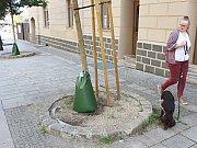 Vaky na vodu umístěné u stromů v Karlových Varech.