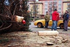 Vánoční strom v Ostrově zlomila vichřice