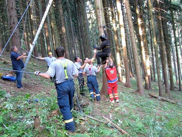 Muž spadl s padákem mezi stromy poblíž Toužimi a zůstal ve větvích ve výšce dvaceti metrů. Sám se neodvážil slézt, přivolaní hasiči museli za ním na strom, zajistit ho lanem a spustit dolů.
