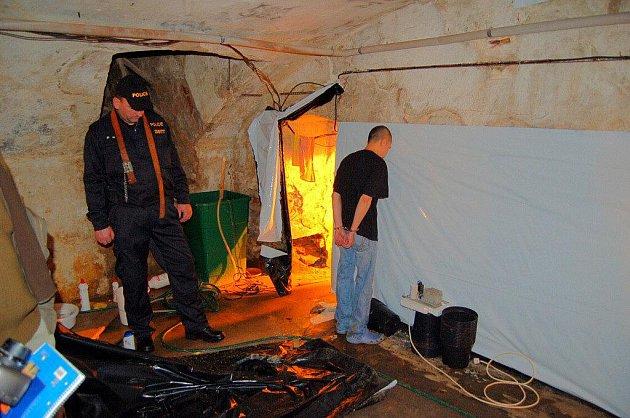 Pěstírnu konopí objevili kriminalisté nedaleko Sadova na Karlovarsku