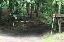 Cesty vedoucí do lázeňských lesů slouží jako technické komunikace a ke svážení dřeva.