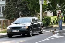 Auto před školou srazilo devítiletého školáka
