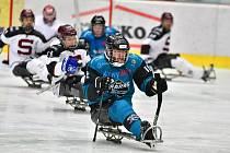 Para hokejisté SKV Sharks Karlovy Vary v souboji s pražskou Spartou urvali vysokou výhru 8:1.