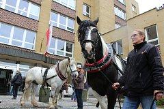 Protest fiakristů před karlovarským magistrátem.